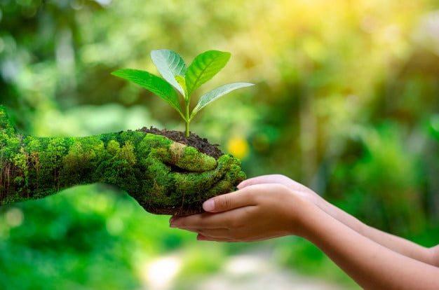 Día Mundial del Medio Ambiente - 05 de Junio