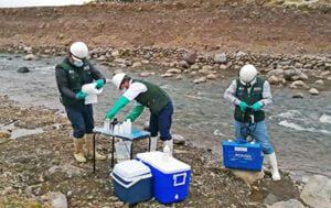 """El Ministerio de Agricultura y Riego, a través Autoridad Nacional del Agua (ANA), inicio el segundo Monitoreo de Calidad de Agua Superficial y Sedimentos del año 2020, del  03 al 13 de noviembre, con medición de parámetros de campo, temperatura, oxígeno disuelto,  PH, conductividad, toma de muestras de agua del rio Macusani y rio San Gabán.La Meta programada para esta oportunidad es: 36 Puntos de muestreo (10 puntos en U.H. Tambopata y 26 puntos en U.H. Inambari, cumpliendo estrictamente el """"Protocolo Nacional para el Monitoreo de la Calidad de los Cuerpos Naturales  de Agua superficial"""", aprobado con Resolución Jefatural N° 010-2016-ANA."""